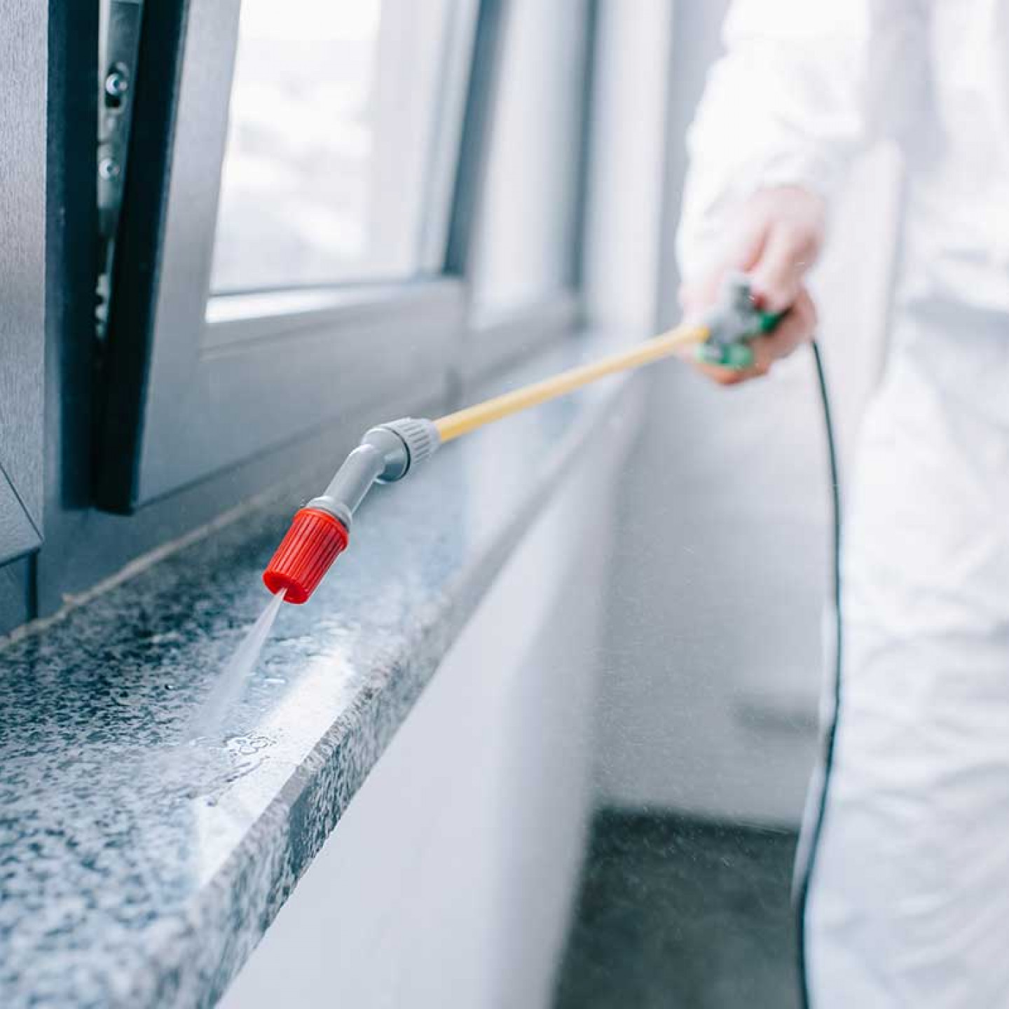 Cost-Effective Commercial Termite Control By The Experts